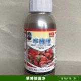 厂家直销 河南草莓锁菌净 辛菌胺专用杀菌剂 价格实惠
