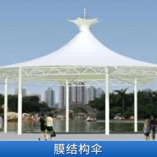 膜结构景观伞价格图片