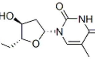 β-胸苷图片
