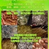 冶炼厂高价收购碳酸铜 碳酸铜亮铜 碳酸铜回收厂家