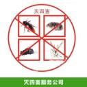 饭店灭苍蝇 【徐州市佳洁除虫服务】饭店灭苍蝇价格