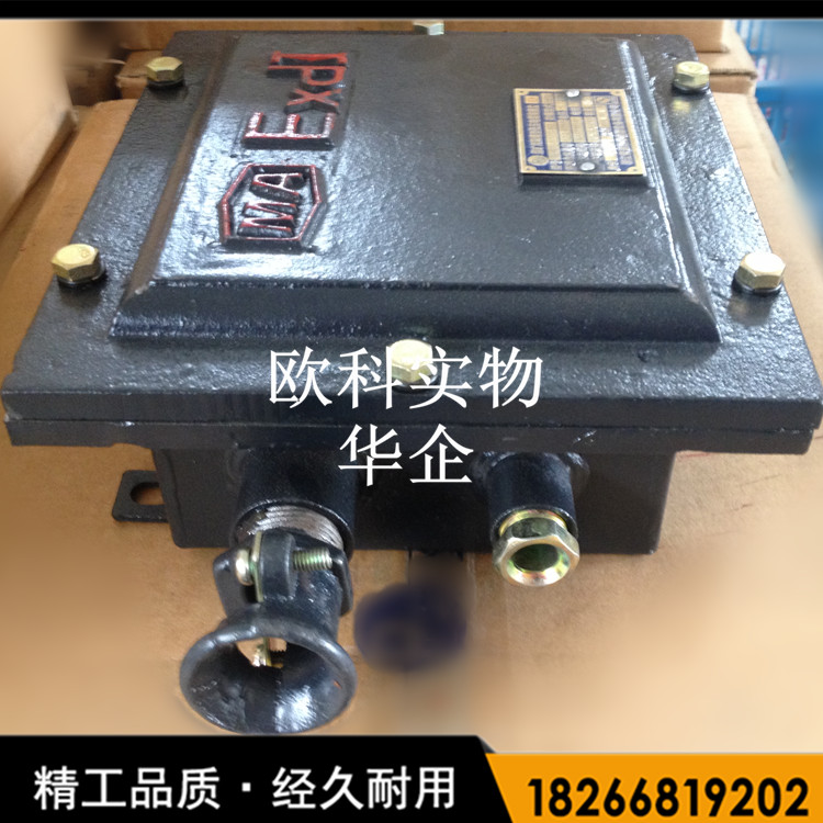供应防爆电机接线盒
