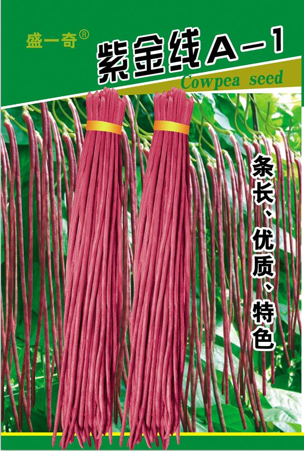 紫豇豆种子 紫金线豇豆种子 盛琪蔬菜种子公司批发豇豆种子 春秋型豇豆种子