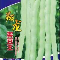 奇山芸豆种子