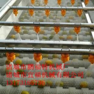 带叶果蔬气泡喷淋清洗机图片