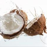 口红 润唇膏 唇油添加原料 天然原料氢化椰油