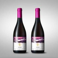 中国红酒不干胶标签设计印刷厂家报价
