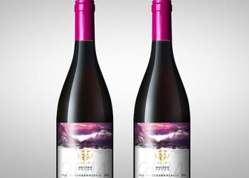 中国红酒不干胶标签设计印刷厂家图片