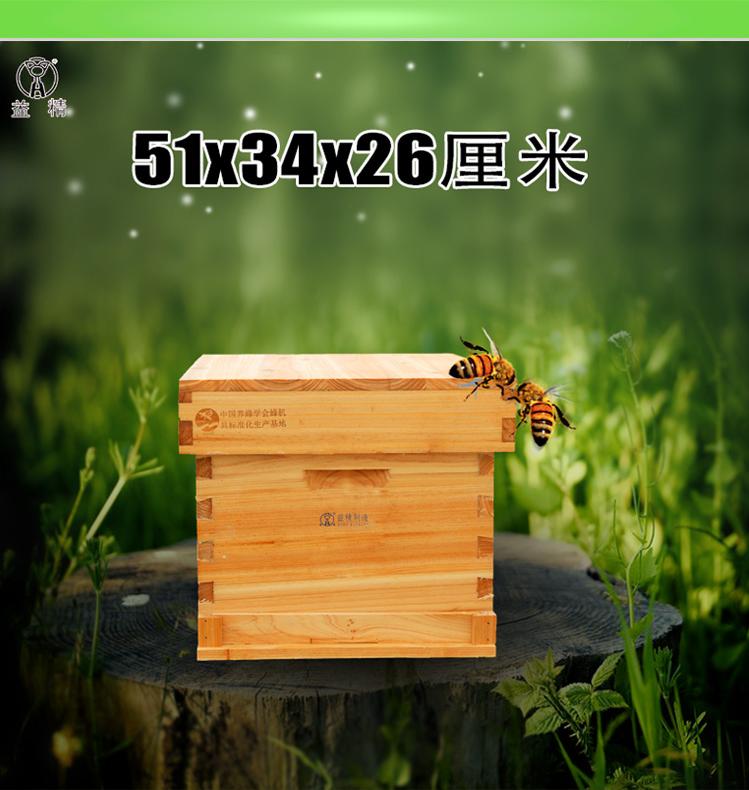 中蜂七框巢箱益精单层箱体中蜂七框 巢箱 底箱51×34 蜂具 养蜂工具 十框蜂箱 中蜂七框巢箱