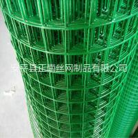 厂家供应荷兰网涂塑网绿色围栏网