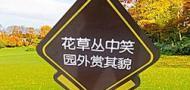 苍南县龙港德慧标牌厂