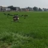 飞防助剂 无人机喷洒