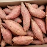 山东产的烟薯25 面向全国大量供  我们的红薯地瓜   商品薯面向全国供应