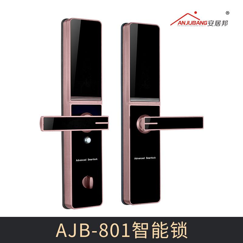 厂家直销 AJB-801智能锁 多功能智能门锁 家庭指纹密码锁 智能防盗指纹锁