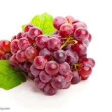 红提葡萄 山西红提葡萄 红提葡萄厂家 红提葡萄价格 红提葡萄基地