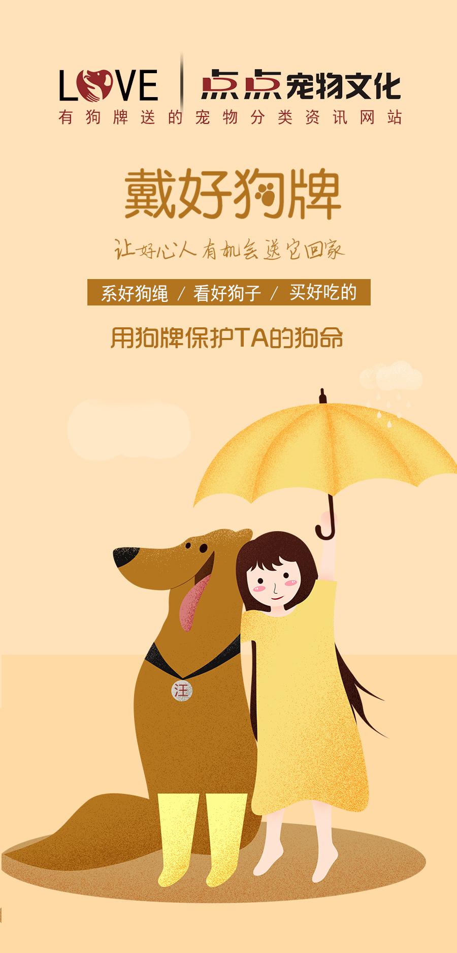 点点宠物文化-宠物数据信息工作犬和导盲犬警犬缉犬搜救犬宠物猫狗一定要办理血统证吗? 点点宠物文化-宠物数据信息