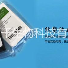 上海百千全黑全白酶标板 上海百千全黑全白酶标板测荧光图片