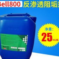 贝尔bell800 反渗透阻垢剂 10倍浓缩液