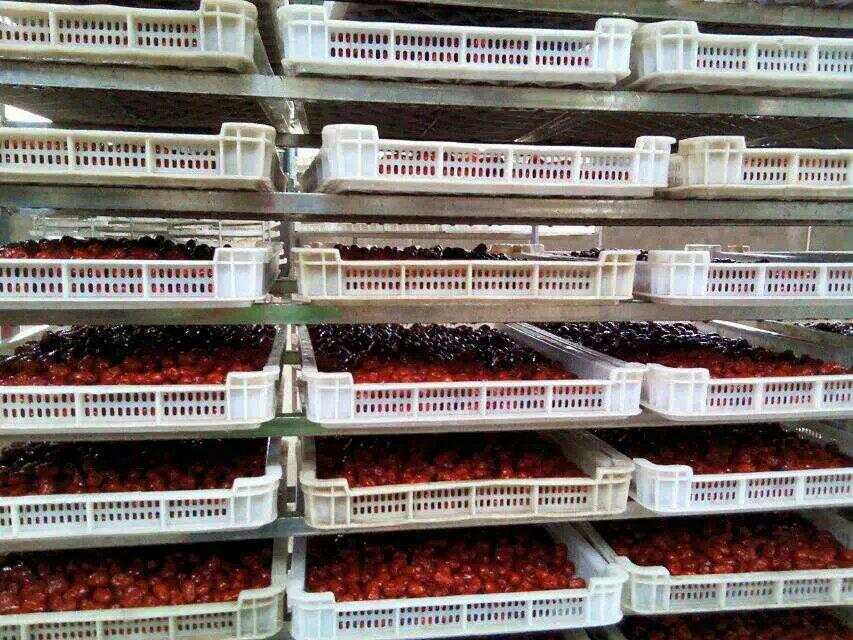 供应红枣烘干机厂家直销_红枣烘干机批发_红枣烘干机价格 中药材烘干机 红枣烘干机