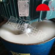 半透明硅胶工艺品硅橡胶矽利康图片