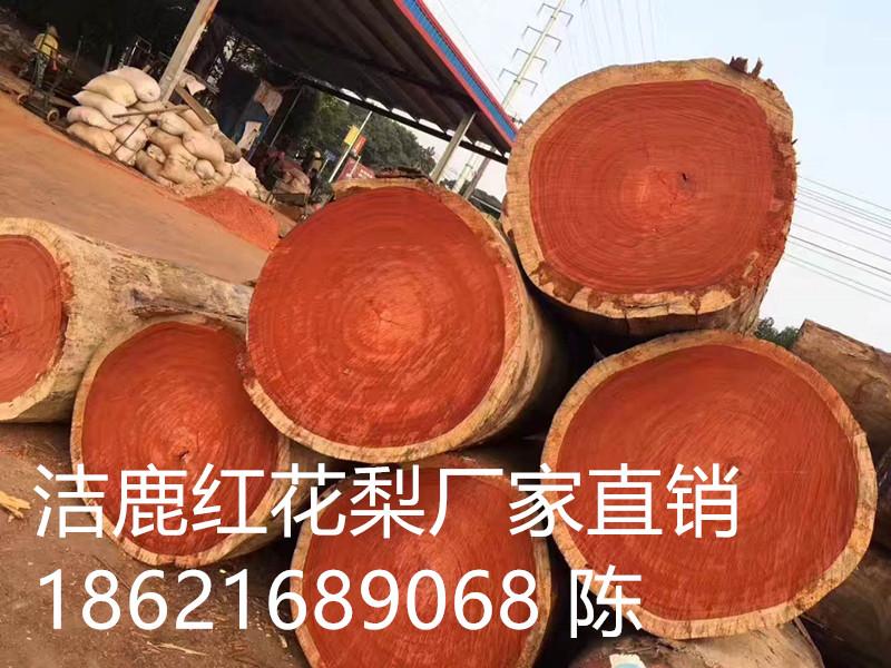 江西红花梨原木辨别方法南昌红花梨厂家