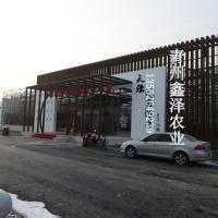 绿色生态餐厅 休闲游览观光型钢结构骨架智能生态温室绿色阳光餐厅