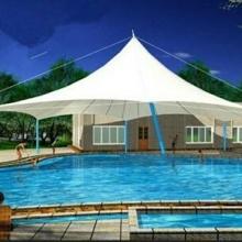 泳池顶棚 泳池顶棚价格 河南儿童设施膜结构 河南儿童设施膜结构定制 泳池顶棚