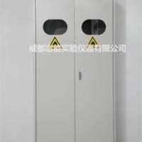 四川成都实验室气瓶柜 全钢气瓶柜 报警钢瓶柜