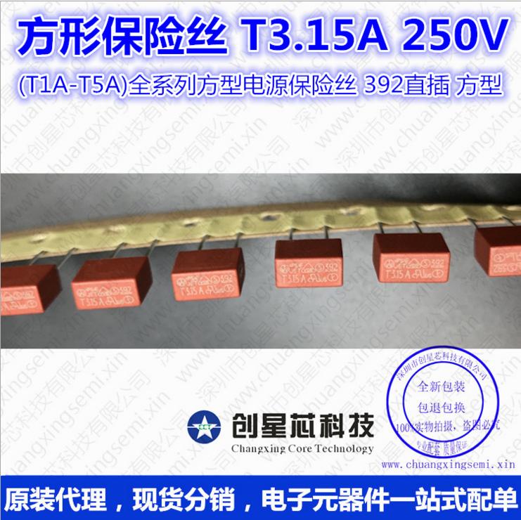 方形保险丝 T3.15A 250V (T1A-T5A全系列方型电源保险丝 392直插