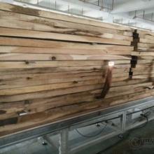 供应GGZ-6-DT红木高频真空木材干燥机 石家庄多田供应高频红木干燥机批发