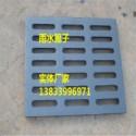 铸铁雨水篦子250*700*40图片