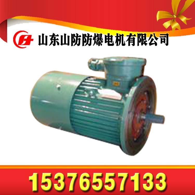 YE2-180M-2矿用电动机【厂家】【价格】【安装图纸】
