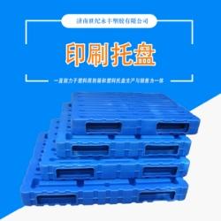 世纪永丰塑胶印刷托盘厂家 吹塑托盘?仓储塑料托盘卡板 叉车托盘