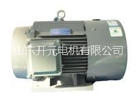 液压泵专用电机图片