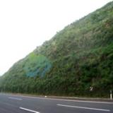主动防护网护坡技术 生态修复 边坡绿化 环境工程
