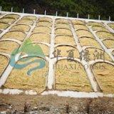 北京喷播绿化技术  环保椰纤维生态植被毯草毯 边坡修复绿化