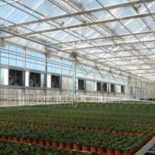 供应日本进口农业大棚薄膜 大棚薄膜报价 农业用具 温室阳光房图片