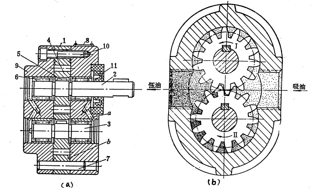 齿轮泵图片/齿轮泵样板图图片