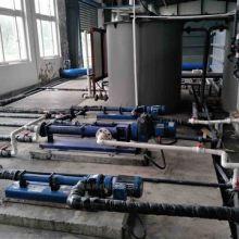 西派克螺杆泵BN10-6L定转子连轴杆万向节机械密封批发