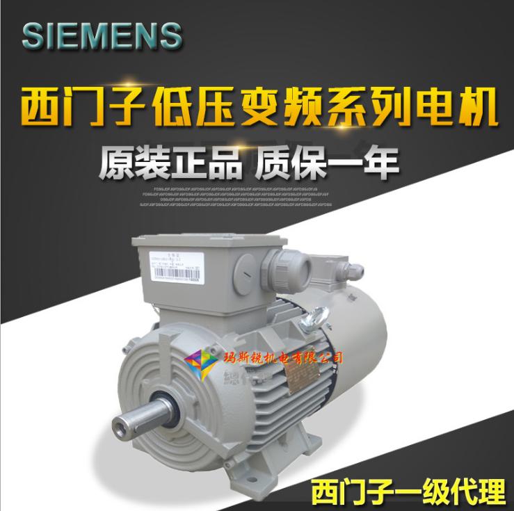 原装进口 0.75kw4极立卧式三相异步电动机