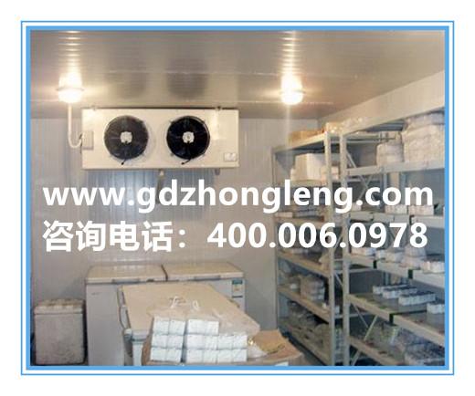 冷库设备供应 冷库设计方案 冷库工程建造 专业20年 中冷制冷
