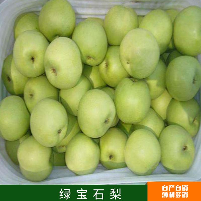 厂家直销批发供应 绿宝石梨 果实外观艳丽风味独特 果肉黄白色 肉质细 汁多 量大从优