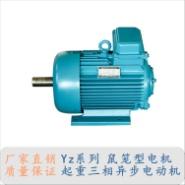 YZ系列笼型电动机图片