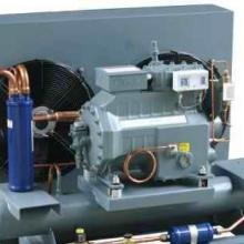 新疆制冷机组 乌鲁木齐制冷机组价格 乌鲁木齐制冷设备 制冷机组 谷轮 制冷机组谷轮