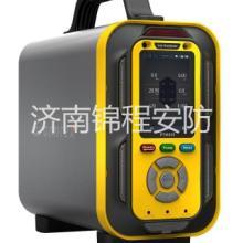 手提式复合型气体分析仪