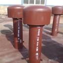 自来水厂罩型通气帽生产厂家图片