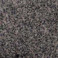 新矿G654粗花芝麻黑石材光面价格批发