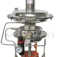生产厂家专业提供ZZYVP氮封装置