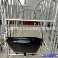 亚冠YG-05母猪定位栏价格合理批发