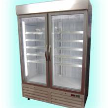 立式低温玻璃门冷柜 立式低温双玻璃门冷柜批发